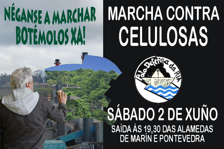 celulosas2012.jpg